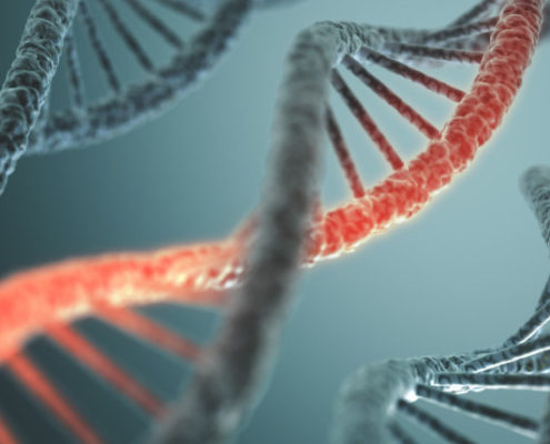 CRISPR, DNA, gene splicing, gene ethics, biotechnology