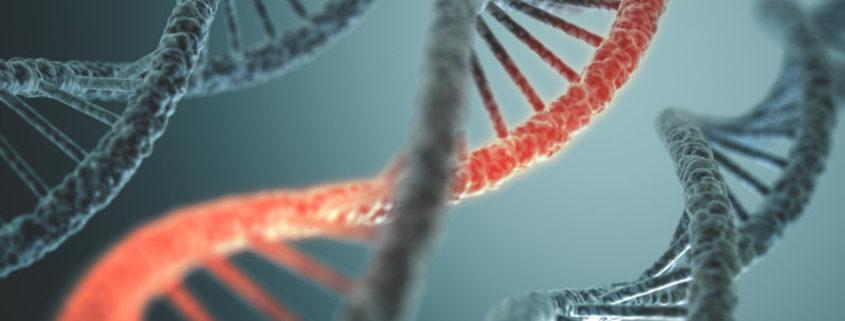 CRISPR, DNA, gene splicing, gene ethics, biotechnology