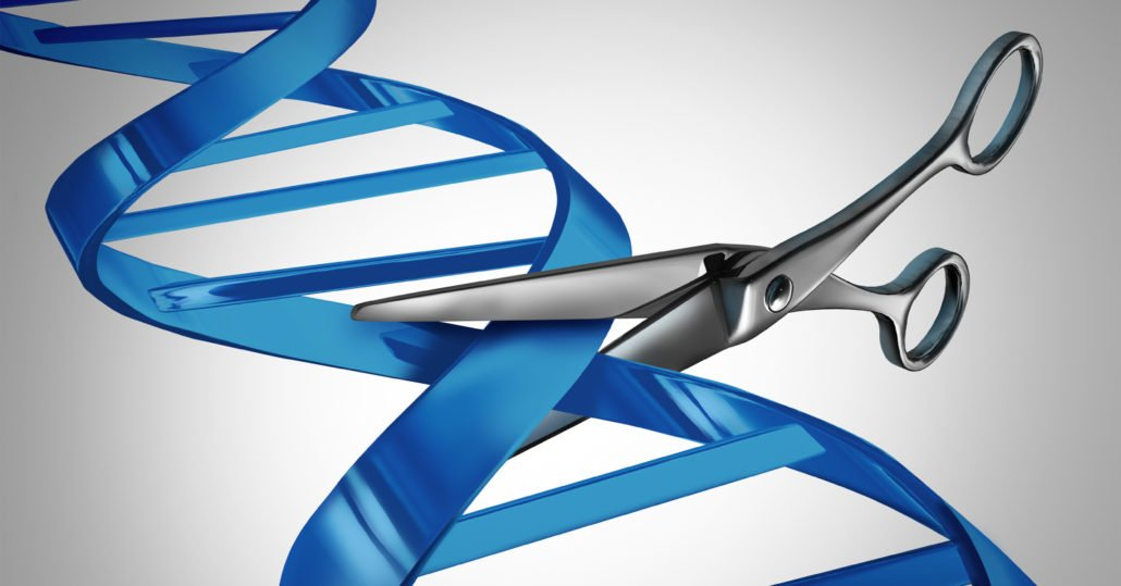 DNA_splicing_scissors