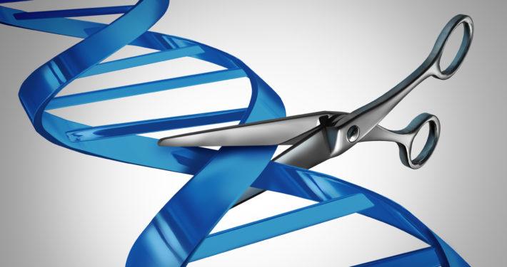 DNA_splicing_scissors